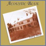 Acoustic Blue Empty House