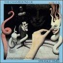 chameleons-uk-strange-times