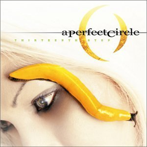 Perfect Circle Thirteenth Step