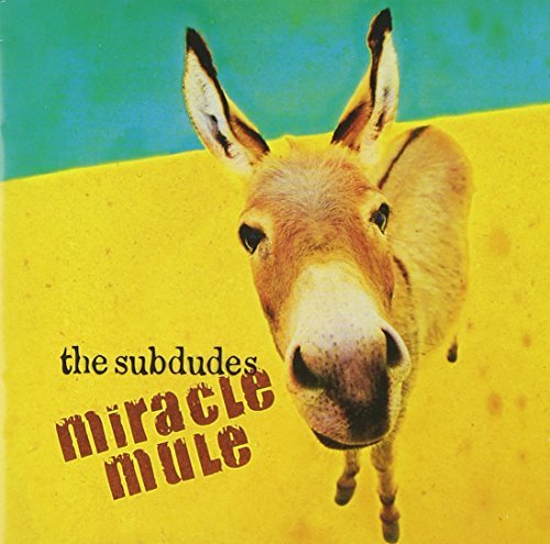 subdudes-miracle-mule