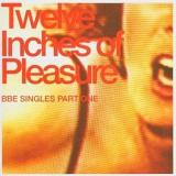 12 Inches Of Pleasure 12 Inches Of Pleasure Pt. 1