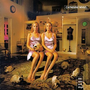 Catherine Wheel Like Cats & Dogs