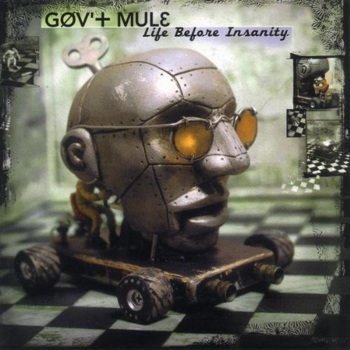 Gov't Mule Life Before Insanity