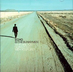 echo-the-bunnymen-what-are-you-going-to-do-with-import-gbr