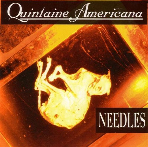 Quintaine Americana Needles