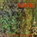 Aurora/Land Of Harm & Appletrees