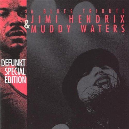 defunkt-blues-tribute-to-jimi-hendrix