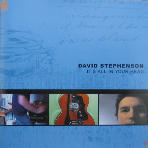 David Stephenson Its All In Your Head