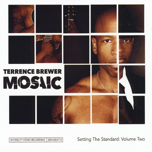 Terrence Brewer Mosaic Setting The Standard V