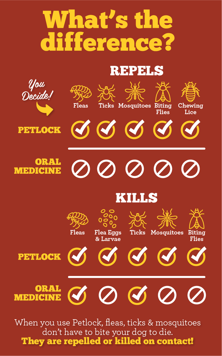 Differences between Petlock and Oral Medicine