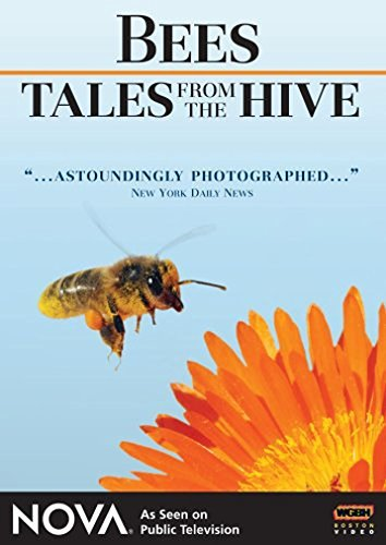 nova-nova-bees-tales-from-the-hive-ws-nr