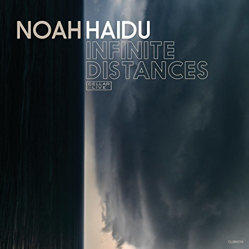 Noah Haidu Infinite Distances