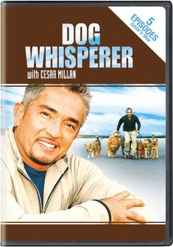 Dog Whisperer Stories From Cesars Way Nr