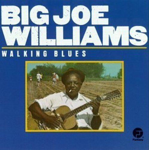 Big Joe Williams Walking Blues