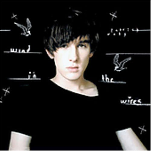 patrick-wolf-wind-in-the-wires