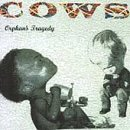 cows-orphans-tragedy