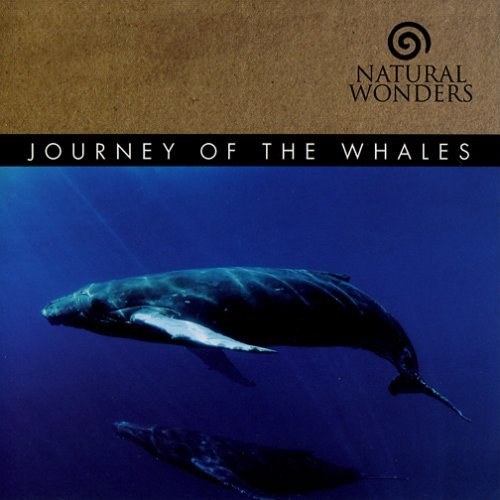 David Arkenstone Journey Of The Whales