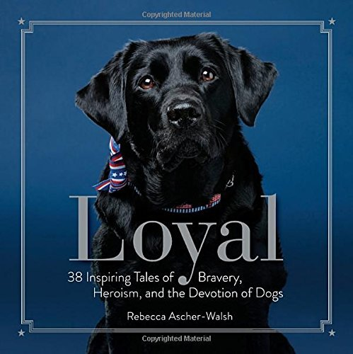 Rebecca Ascher Walsh Loyal 38 Inspiring Tales Of Bravery Heroism And The D