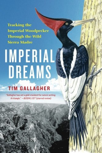 Tim Gallagher Imperial Dreams Tracking The Imperial Woodpecker Through The Wild