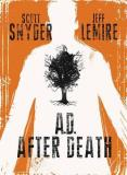Snyder Scott Lemire Jeff A.D. After Death Graphic Novel