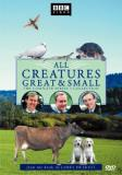 All Creatures Great & Small Season 3 Clr Cc Nr