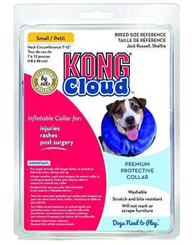 kong-cloud-collar