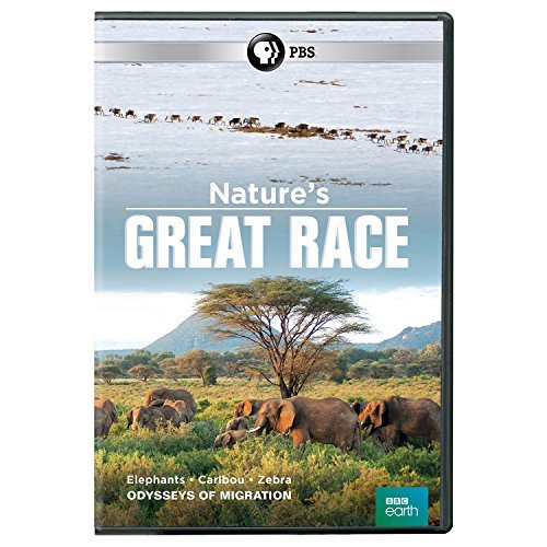 natures-great-race-pbs-dvd