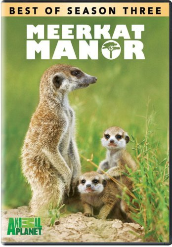 Meerkat Manor Season 3 Best Of Nr
