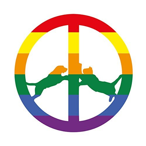Hype Williams Rainbow Edition Lp 180 Gram