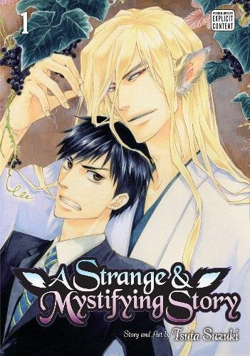 tsuta-suzuki-a-strange-and-mystifying-story-vol-1