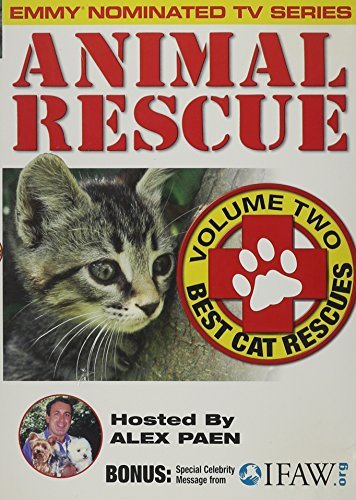 Animal Rescue Vol. 2 Best Cat Rescues