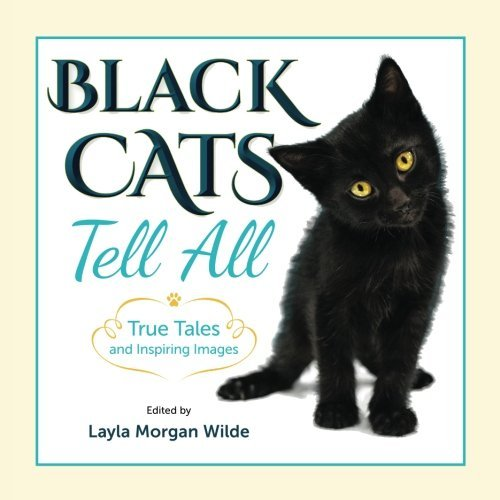layla-morgan-wilde-black-cats-tell-all-true-tales-and-inspiring-imag