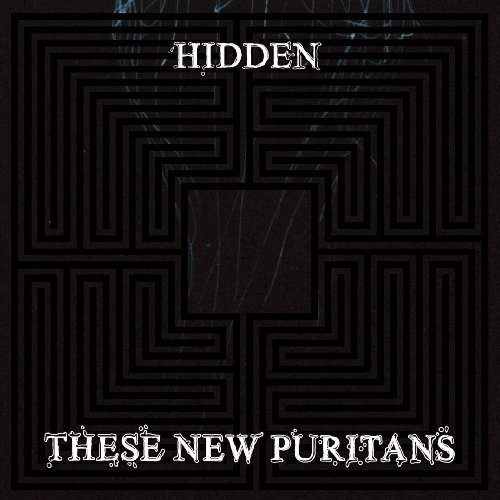 these-new-puritans-hidden