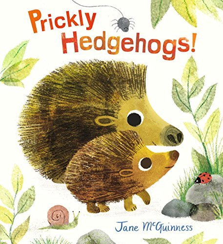 jane-mcguinness-prickly-hedgehogs