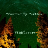 Trampled By Turtles Wildflowers
