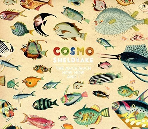 cosmo-sheldrake-much-much-how-how-i