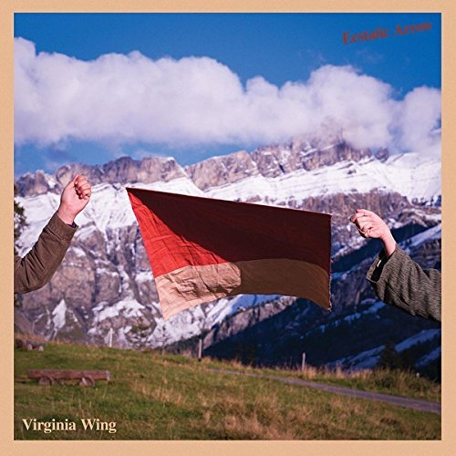 Virginia Wing/Ecstatic Arrow@20 page zine w/ DL code