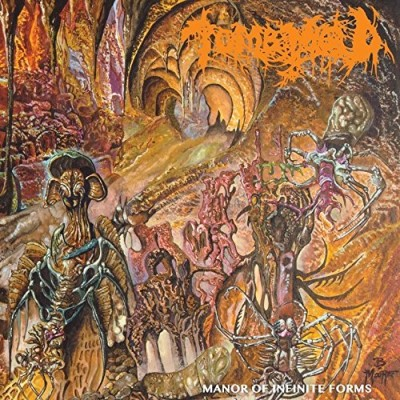 Tomb Mold/Manor Of Infinite Forms