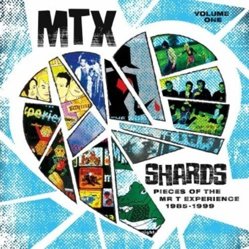 Mr T Experience Shards Vol. 1 Amped Non Exclusive