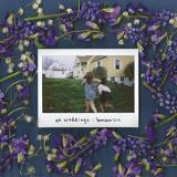 Tomberlin At Weddings (transparent Mint Vinyl ) Transparent Mint Vinyl Indie Exclusive