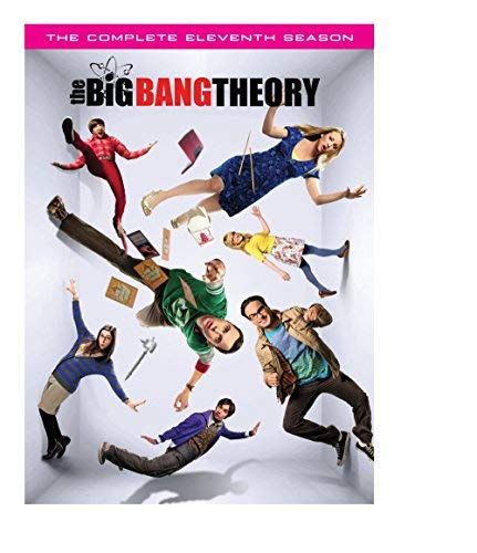 Big Bang Theory Season 11 DVD