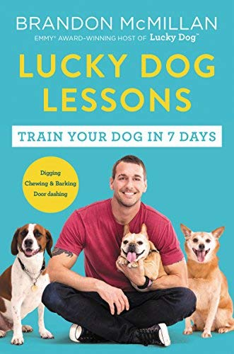 brandon-mcmillan-lucky-dog-lessons-train-your-dog-in-7-days