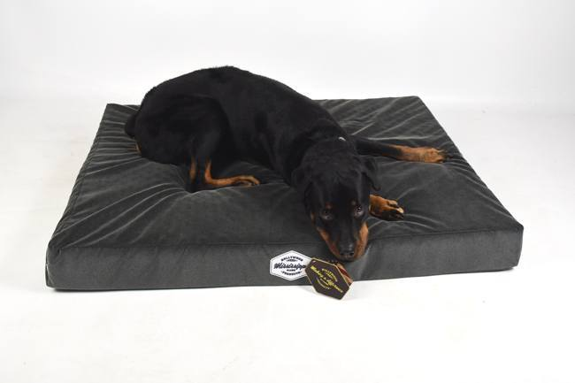 hollywood-feed-mississippi-made-memory-foam-orthopedic-dog-bed