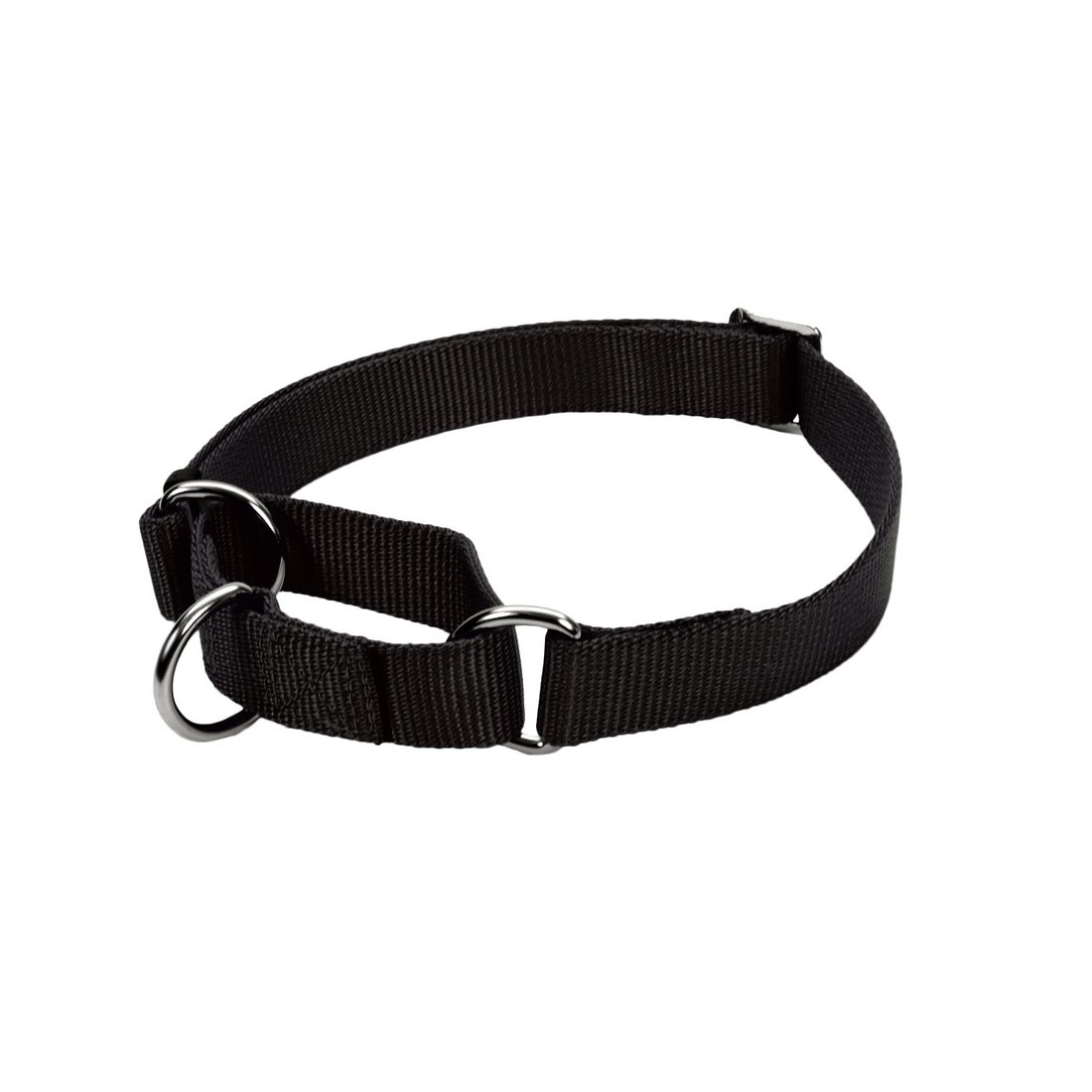 hollywood-feed-combo-collar-black