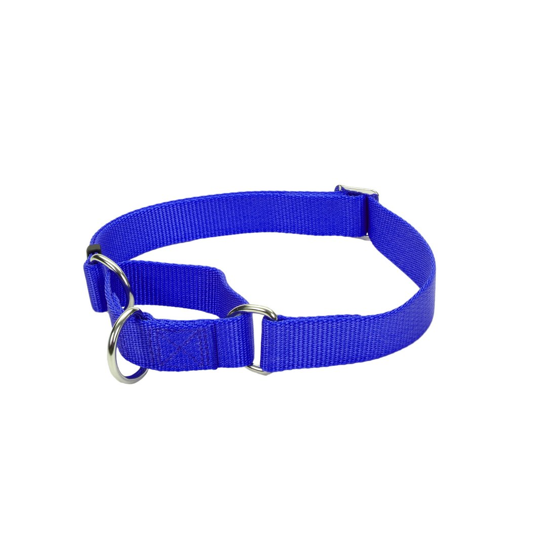 hf-collar-martingale-collar-blue