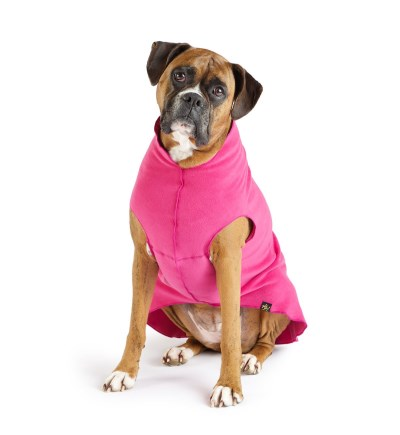 gold-paw-fleece-fuchsia