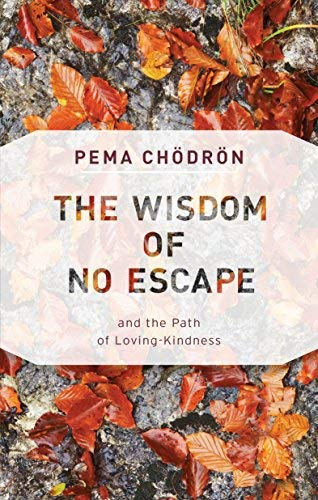 Pema Chodron The Wisdom Of No Escape And The Path Of Loving Kindness