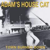 Adam's House Cat Town Burned Down (yellow Vinyl) Yellow Vinyl