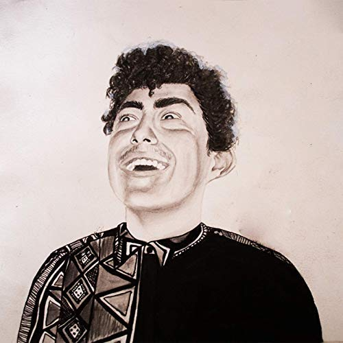 Hobo Johnson The Rise Of Hobo Johnson