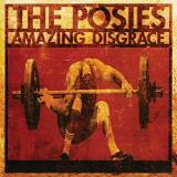 The Posies Amazing Disgrace